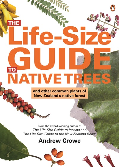 The Life-Size Guide to Native Trees