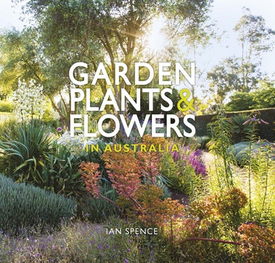 Garden Plants & Flowers in Australia