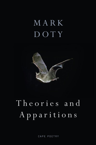 Theories and Apparitions