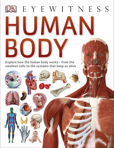 Pocket Eyewitness Human Body