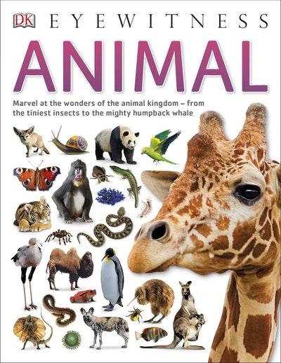 DK Eyewitness: Animal