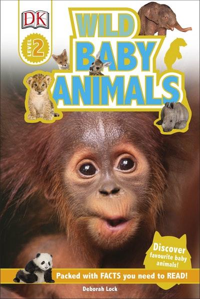 DK Reader: Wild Baby Animals