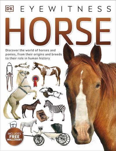 Eyewitness Horse