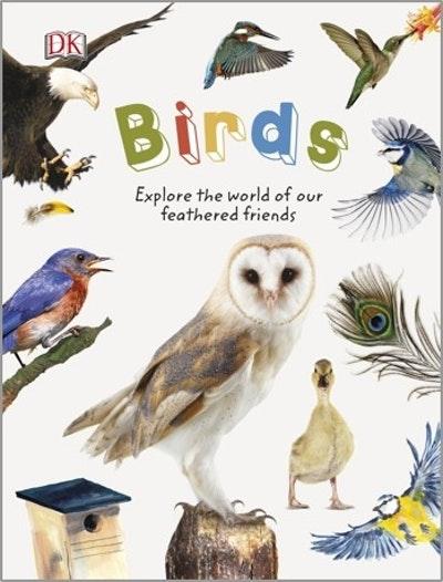 Birds: Nature Explorers