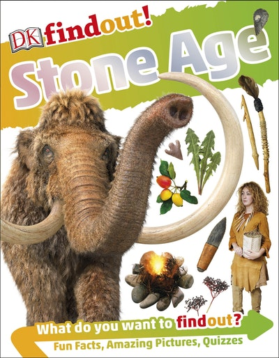 DKfindout!: Stone Age