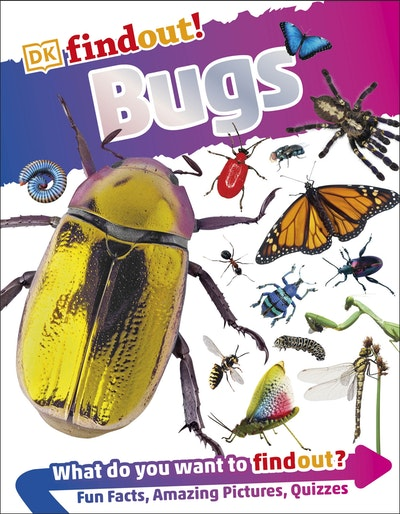 DKfindout!: Bugs