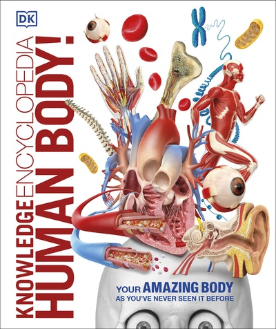 Knowledge Encyclopedia: Human Body!
