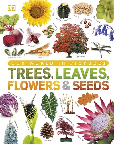 Trees, Leaves, Flowers and Seeds