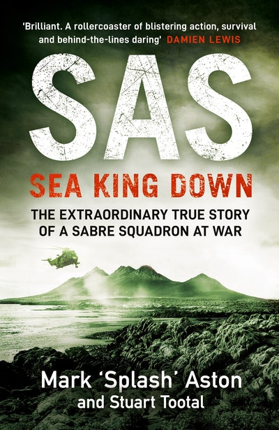 SAS: Sea King Down