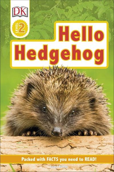 Hello Hedgehog
