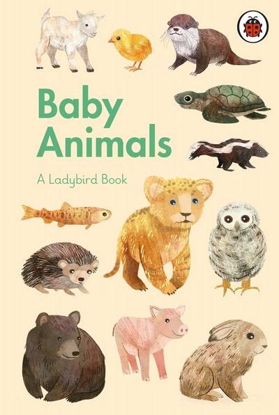 A Ladybird Book: Baby Animals