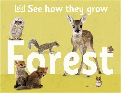 See How They Grow Forest