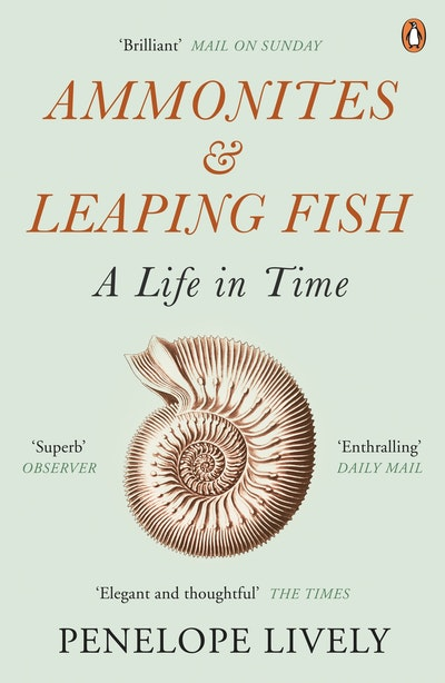 Ammonites And Leaping Fish