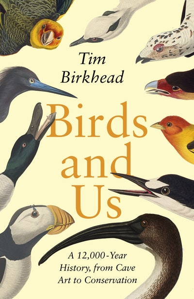 Birds and Us