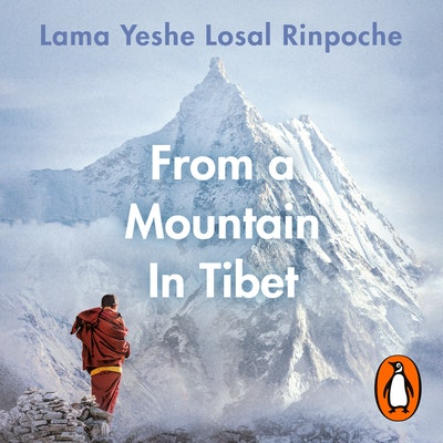 From a Mountain In Tibet