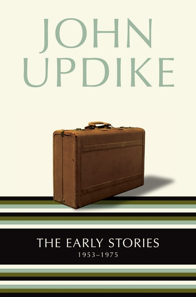 the literary elements in ap a short story by john updike
