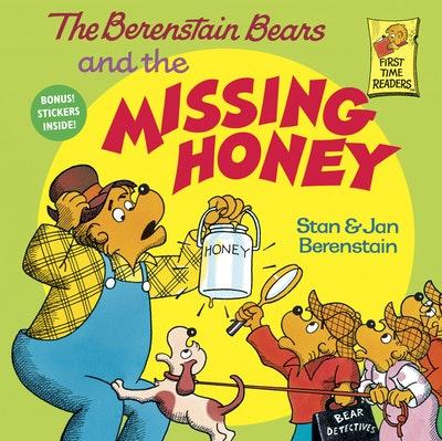 Berenstain Bears & The Missing Ho
