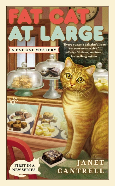 Fat Cat at Large: Fat Cat Mystery Book 1