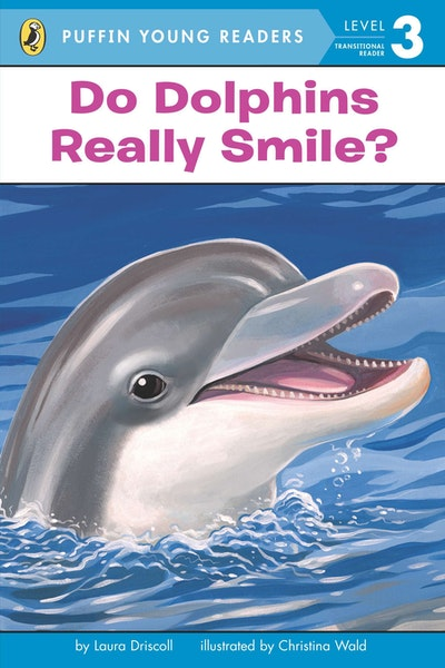 Do Dolphins Really Smile?