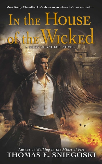 In the House of the Wicked: Remy Chandler Book 5