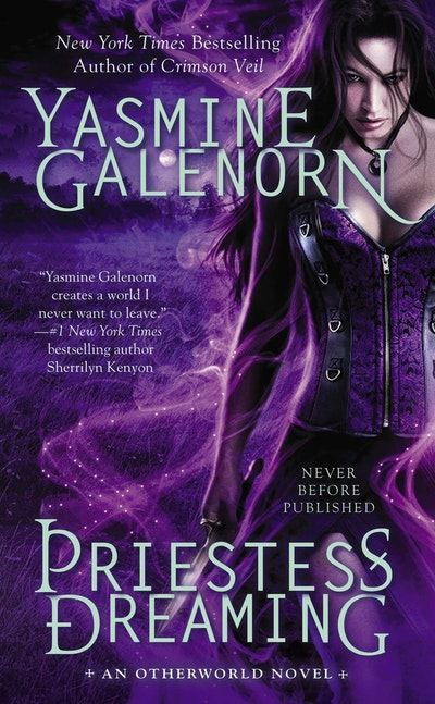 Priestess Dreaming: An Otherworld Novel Book 16
