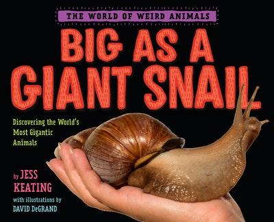 Big as a Giant Snail