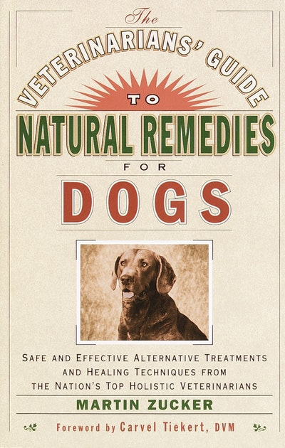 Veterinarians' Guide To Natural Remedies
