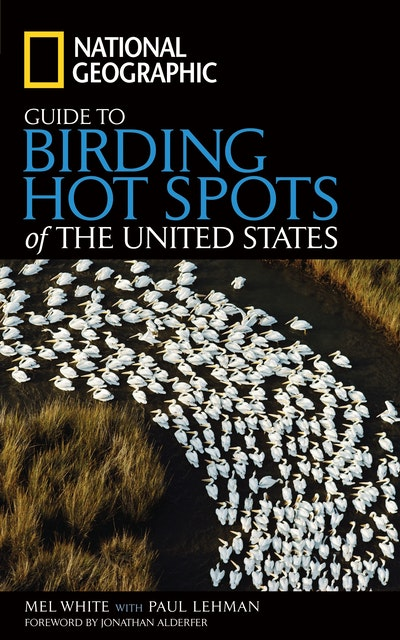 Nat Geo Guide To Birding Hotspots Of The United States