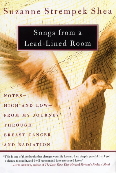 Songs From A Lead-Lined Room
