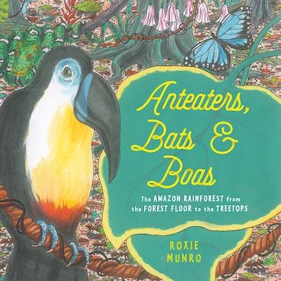 Anteaters, Bats & Boas