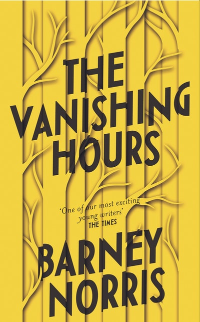 The Vanishing Hours