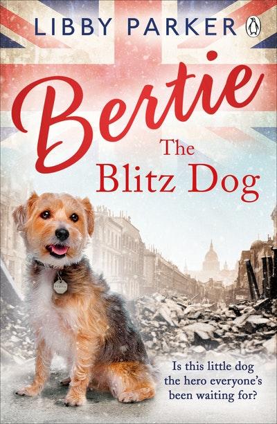 Bertie The Blitz Dog