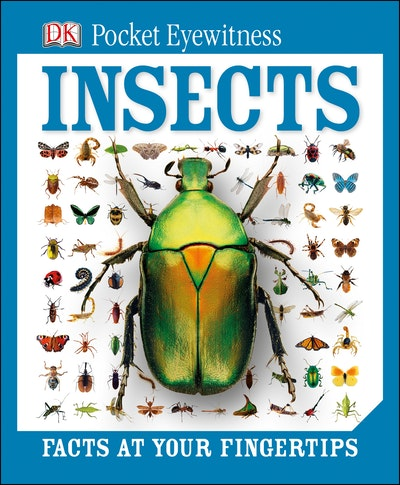 DK Pocket Eyewitness: Insects
