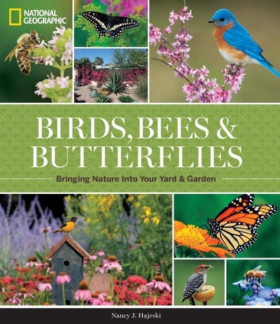 National Geographic Birds, Bees, And Butterflies