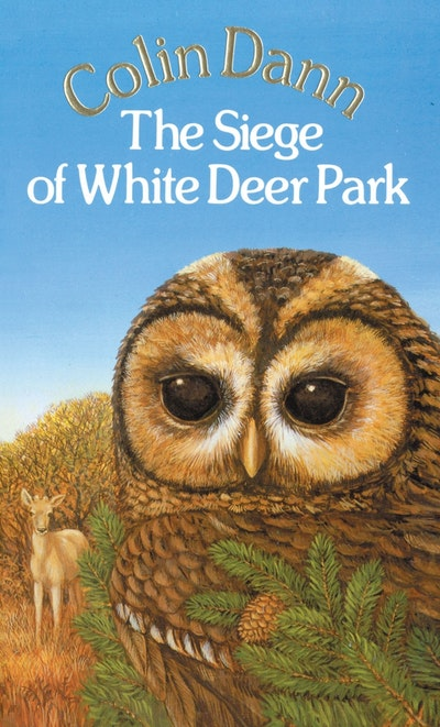 The Siege Of White Deer Park