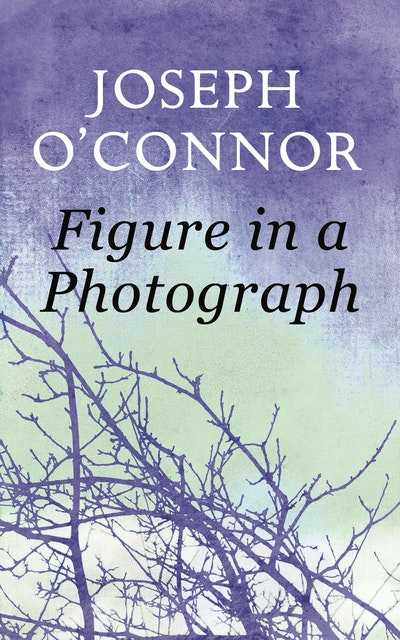 Figure in a Photograph: A Short Story from 'Where Have You Been?'