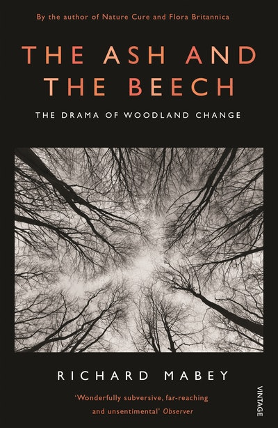 The Ash and The Beech