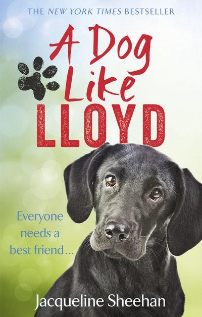 A Dog Like Lloyd