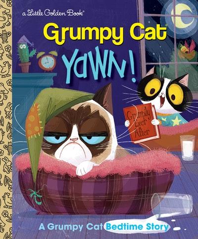 LGB Yawn! A Grumpy Cat Bedtime Story (Grumpy Cat)