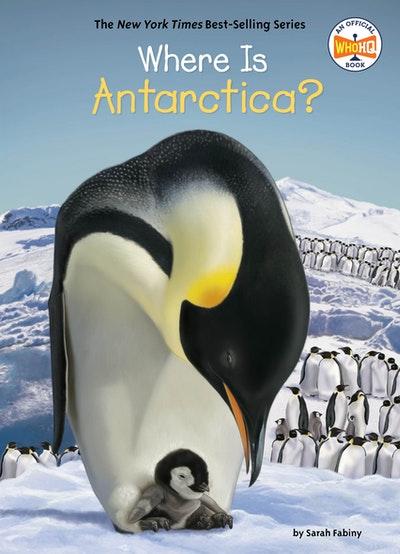 Where Is Antarctica?