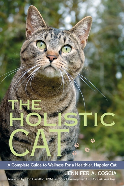 Homeopathic cat wound care