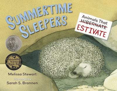 Summertime Sleepers