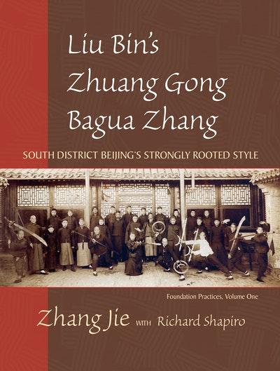 Liu Bin's Bagua