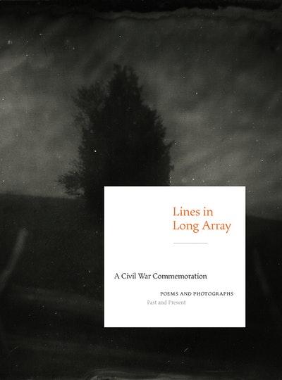 Lines In Long Array