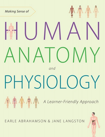 Making Sense Of Human Anatomy And Physiology