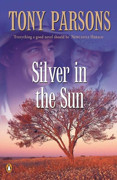 Silver in the Sun