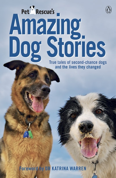 PetRescue's Amazing Dog Stories