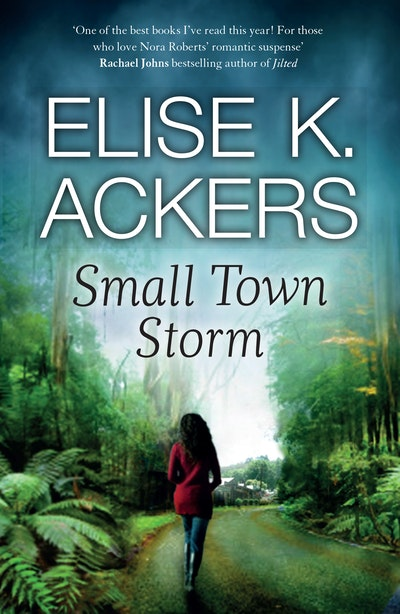 Small Town Storm: Destiny Romance