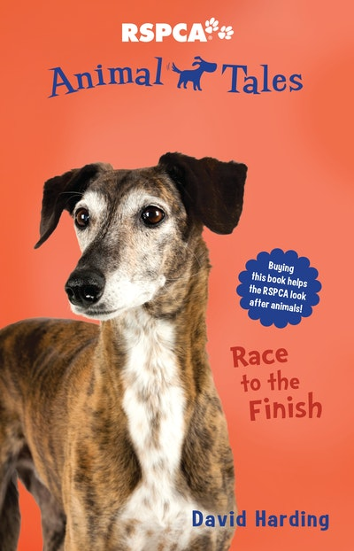 Animal Tales 8: Race to the Finish