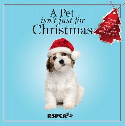 A Pet Isn't Just for Christmas